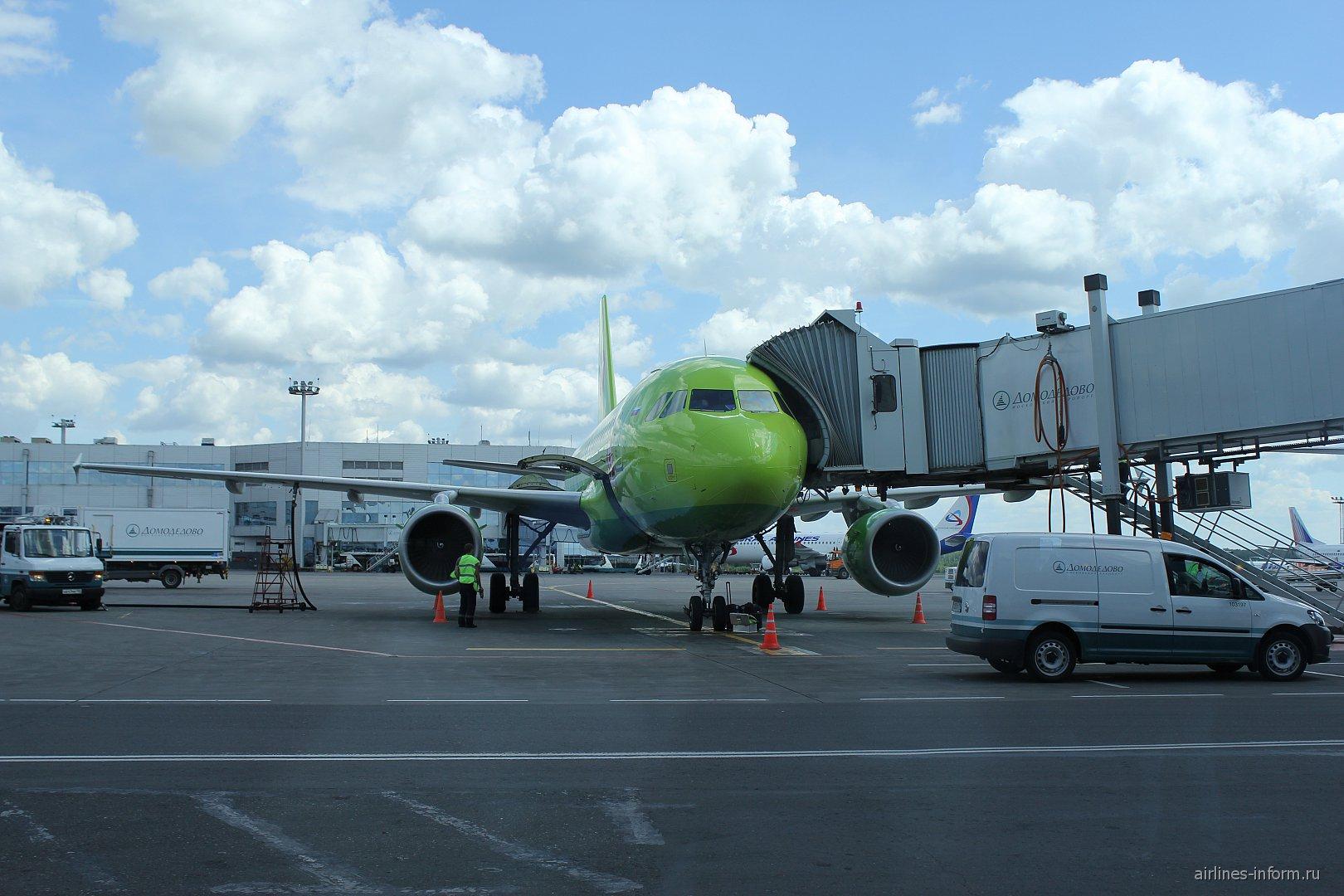 Airbus A320 S7 Airlines в аэропорту Домодедово