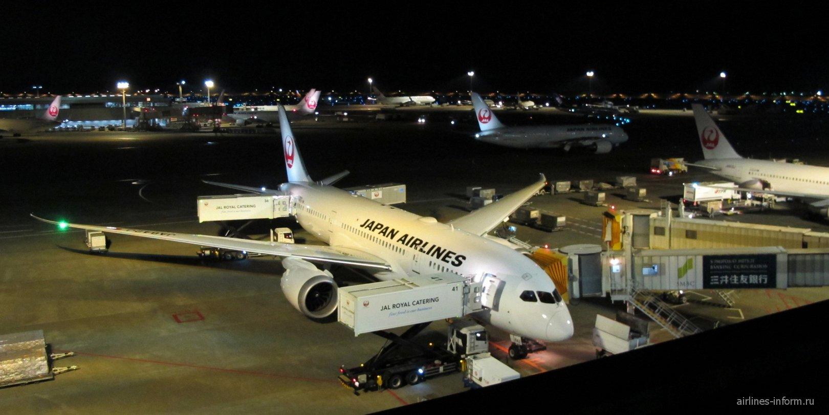 Боинг-787-8 Японских авиалиний в аэропорту Токио Нарита