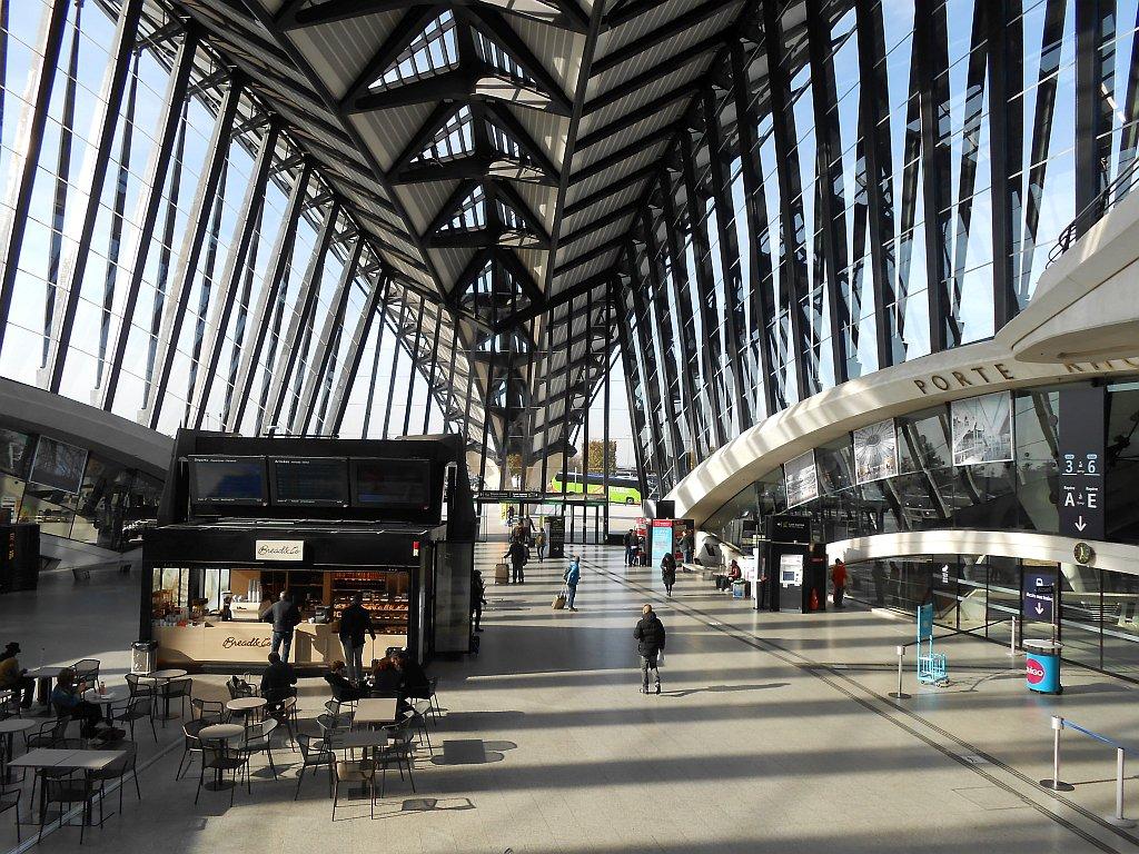 Главный холл Терминала 1 аэропорта Лион Сент-Экзюпери