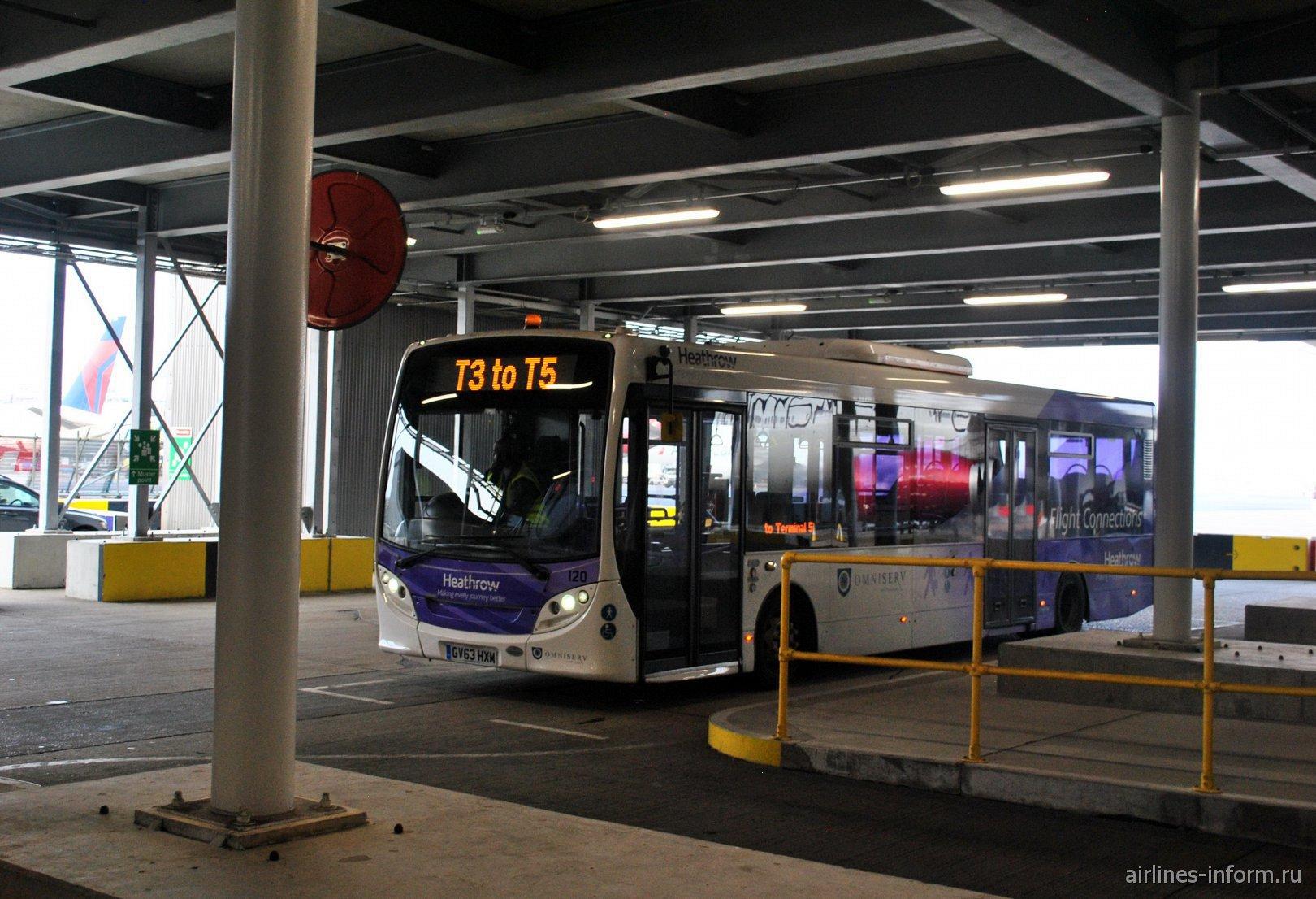 Трансферный автобус между терминалами аэропорта Лондон Хитроу