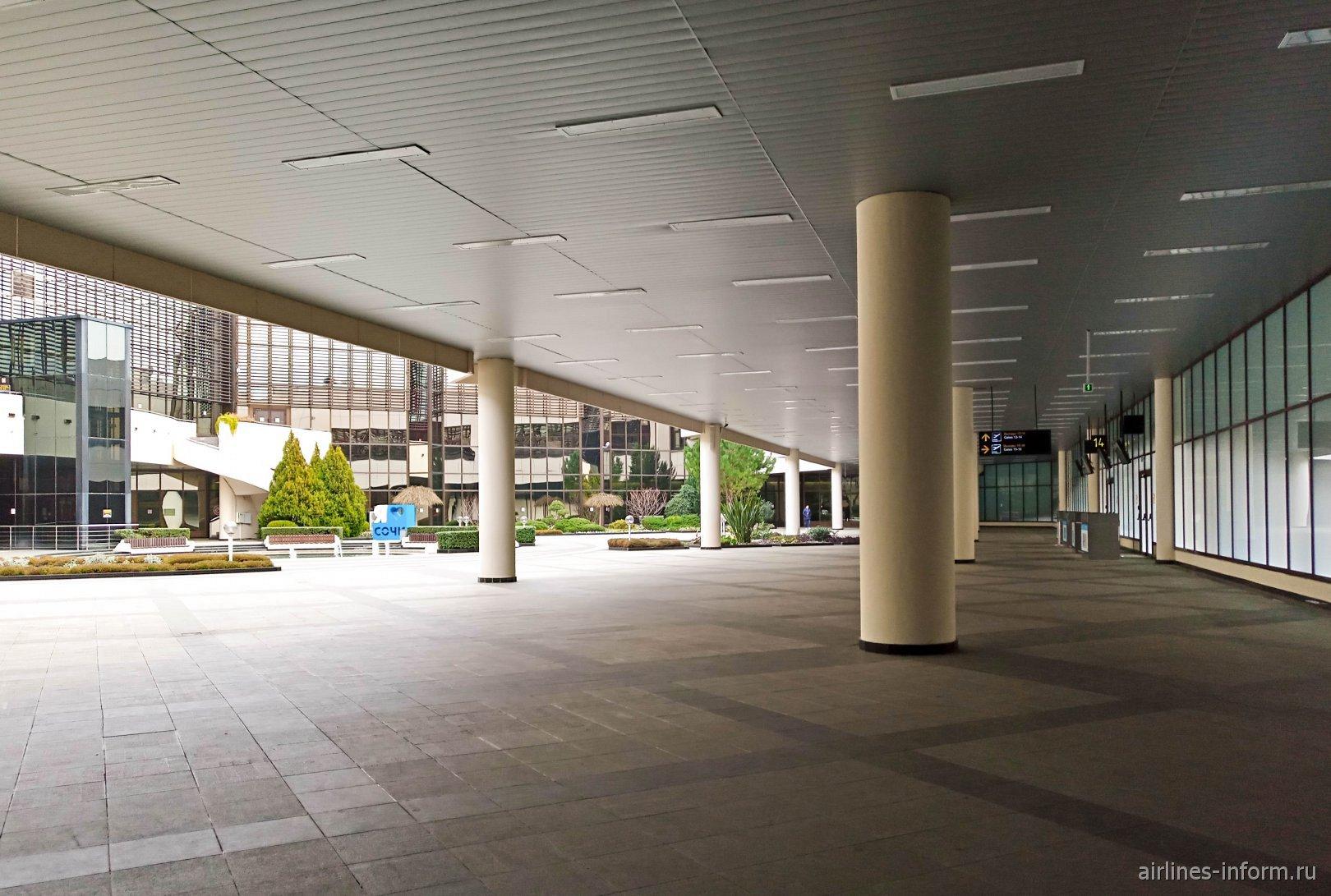 Зеленый дворик в аэропорту Сочи