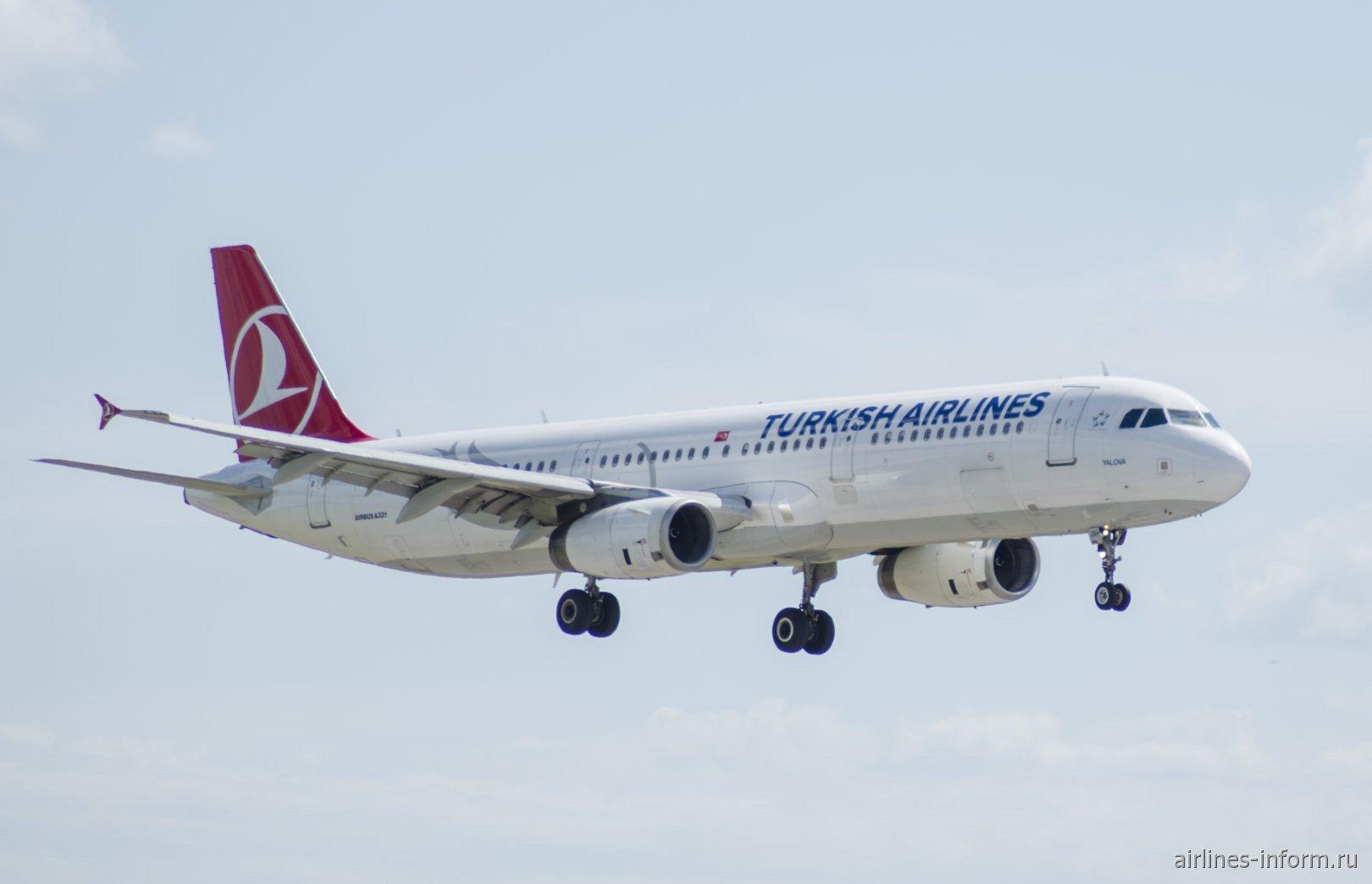Airbus A321 Турецких авиалиний перед посадкой в аэропорту Внуково