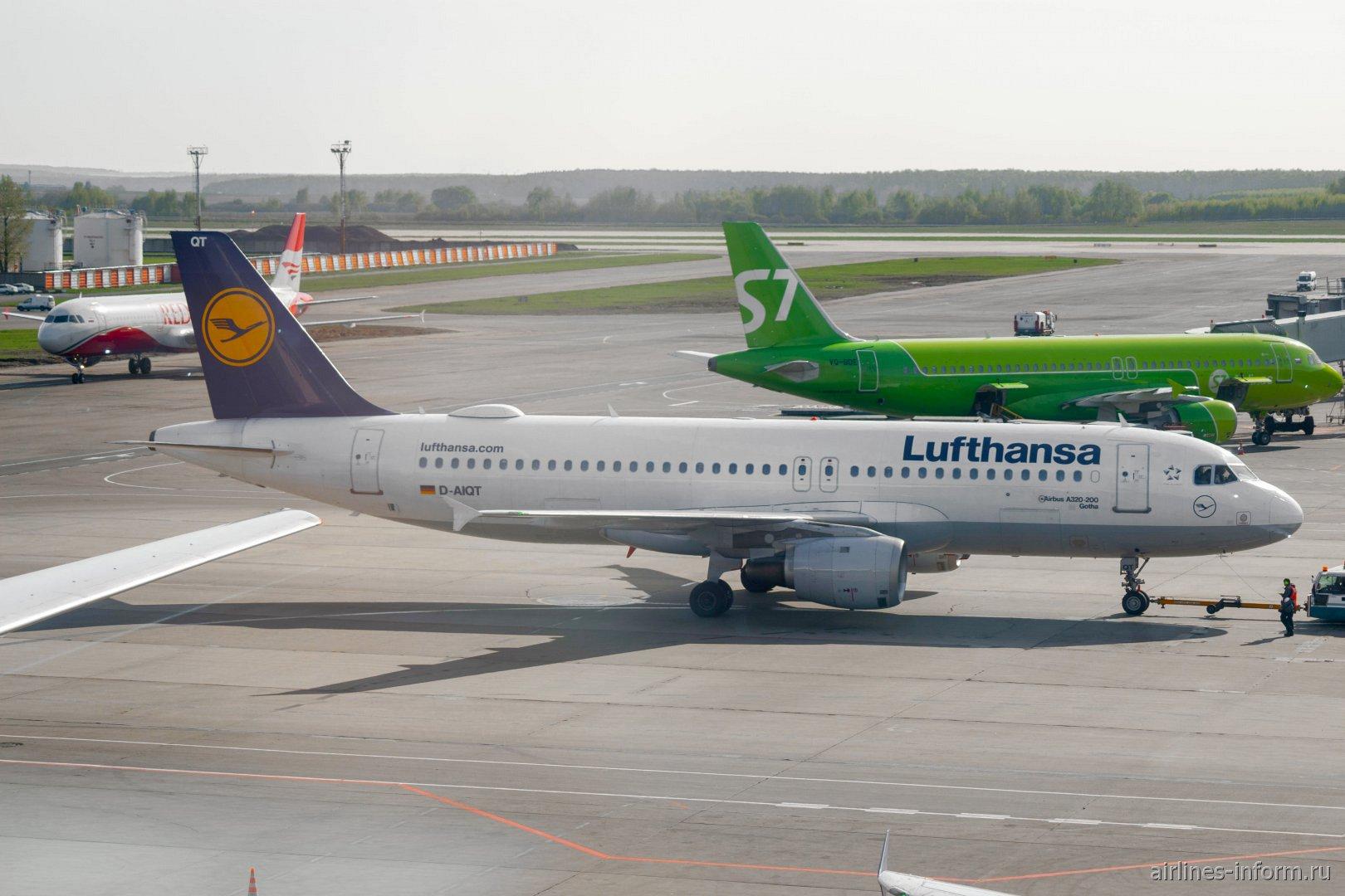 Airbus A320 D-AIQT авиакомпании Lufthansa в аэропорту Москва Домодедово