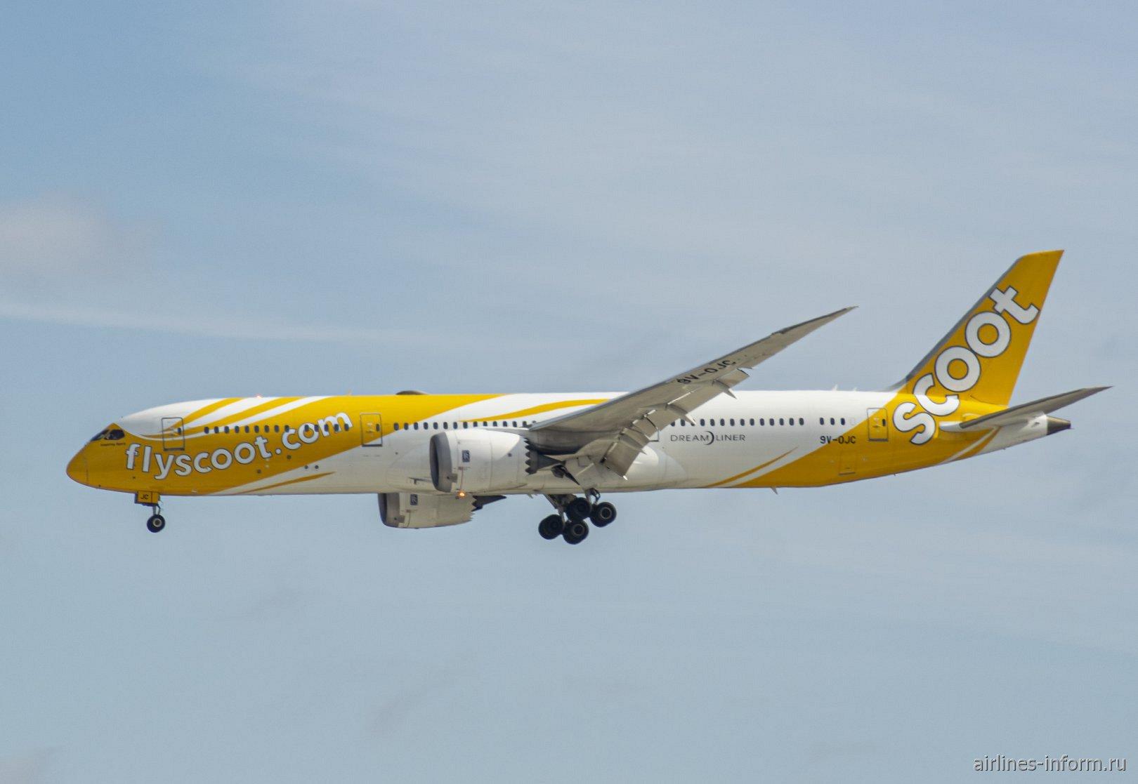 Самолет Boeing 787-9 авиакомпании Scoot приземляется в аэропорту Токио Нарита