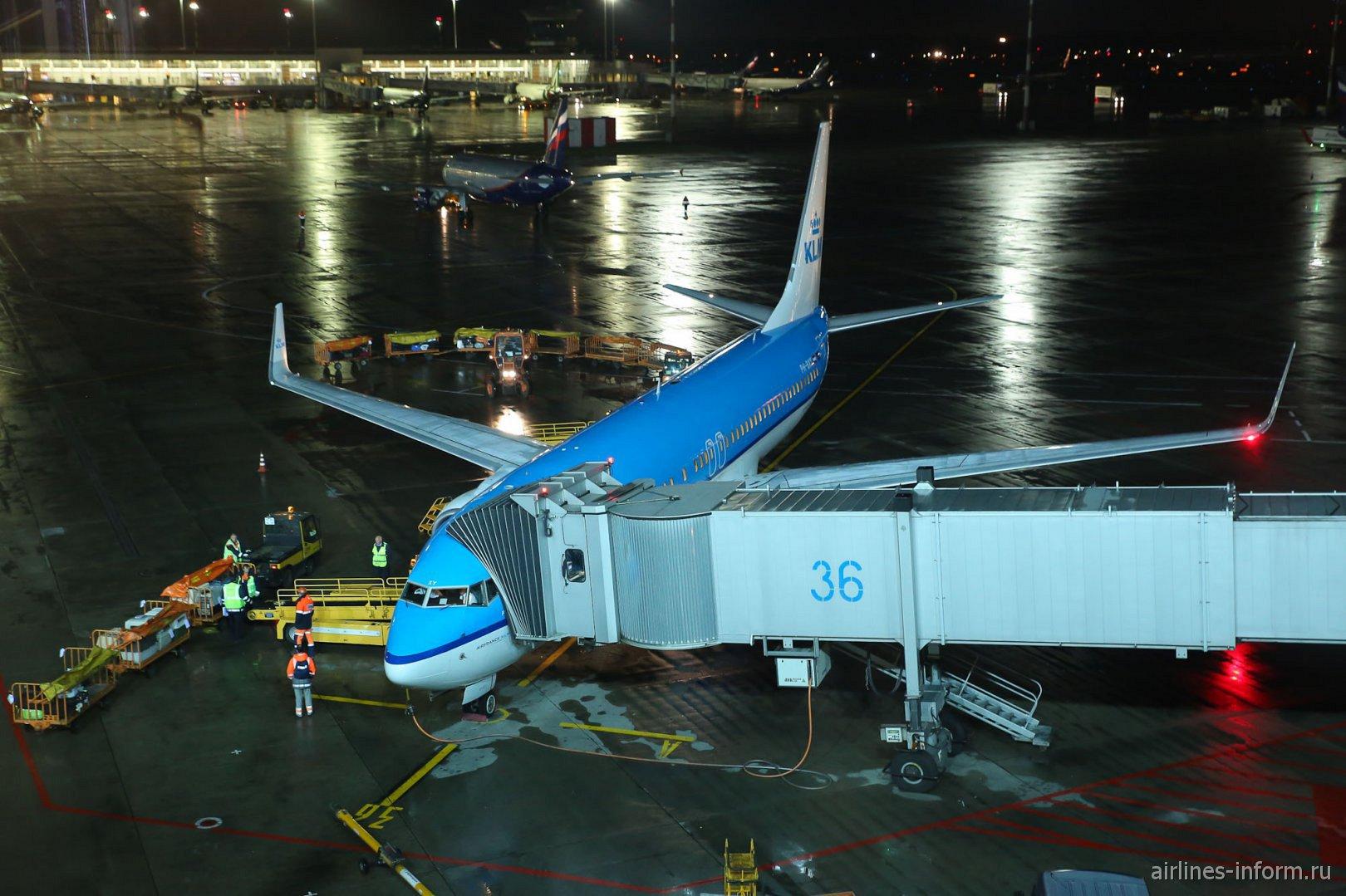 Боинг-737-800 авиакомпании KLM в аэропорту Шереметьево