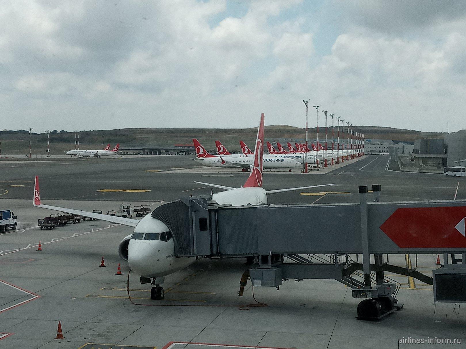 Самолеты Turkish Airlines в аэропорту Стамбул (IST)