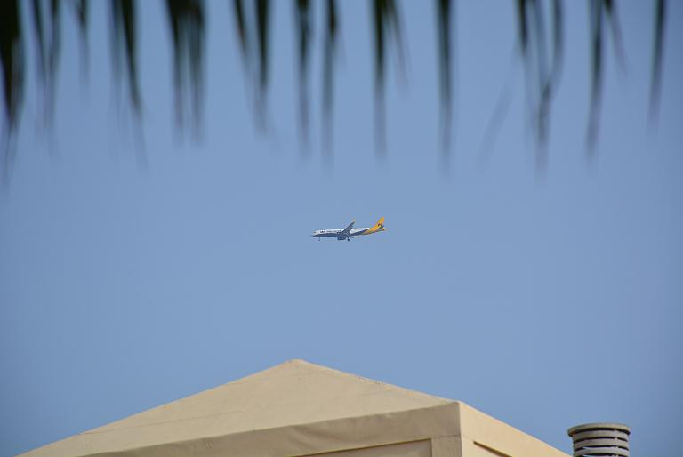 Летний подзаборинг на Тенерифе