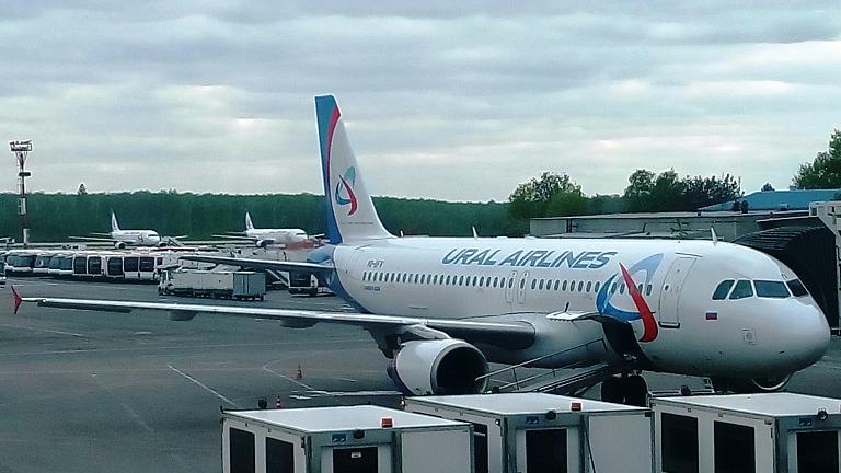 Москва - Екатеринбург Уральскими авиалиниями: кухня, бизнес и эконом. Бонус: новый самолёт.