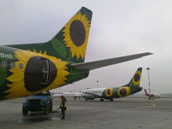 Перелет Омск-Сочи а/к Kuban airlines