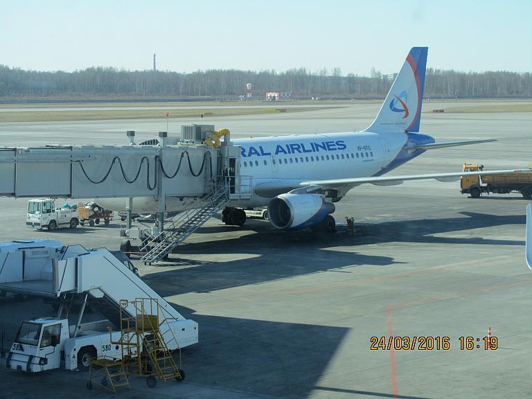 Новосибирск-Санкт-Петербург(через Москву)-Новосибирск Ural Airlines или S7