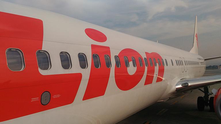 Денпасар (DPS) - Джакарта (CGK) и обратно на индонезийском лоукосте Lion Air. Часть 2.