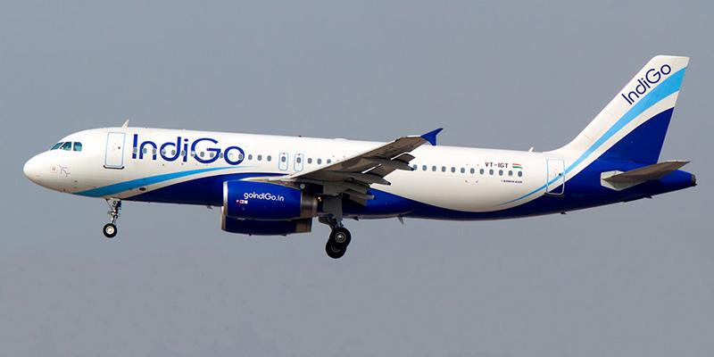 airline and indigo
